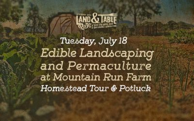 Edible Landscaping and Permaculture at Mountain Run Farm – July 18
