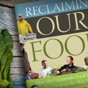 Purchase Now - Reclaiming Our Food