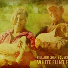 Bill and Cherie Guerrant of White Flint Farm