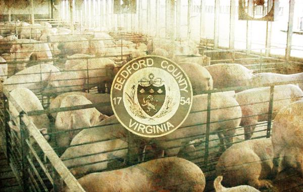 Large-scale Animal Farming at Issue in Bedford County (via News and Advance)