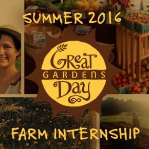 Great Day Gardens - Summer 2016 farm internship