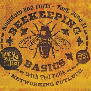 Beekeeping Basics with Ted Falls + Networking Potluck