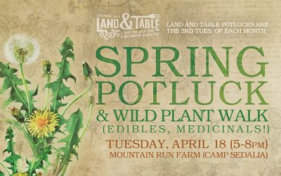 Spring Potluck and Wild Plant Walk – April 18